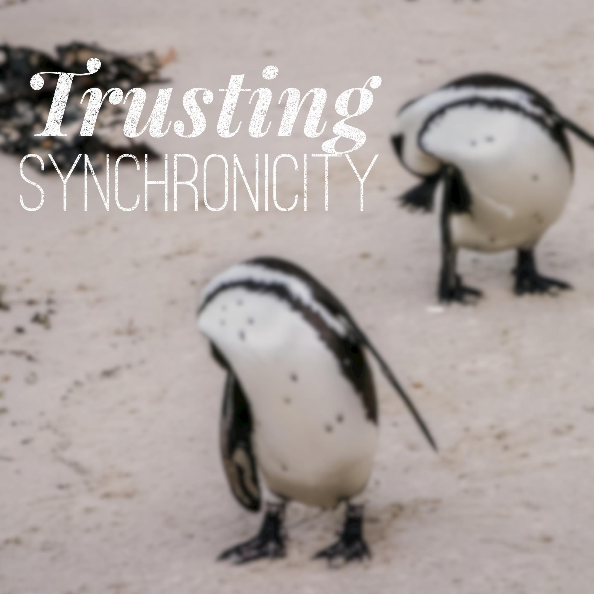 trusting synchronicity